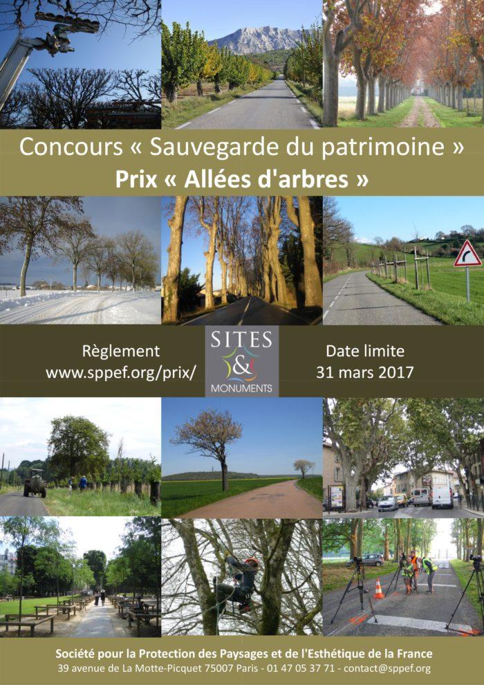 Concours pour la préservation des allées d'arbres